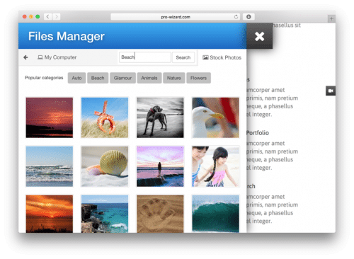 website builder file manager